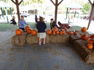 Golden Pond School Parent Group Fundraisers